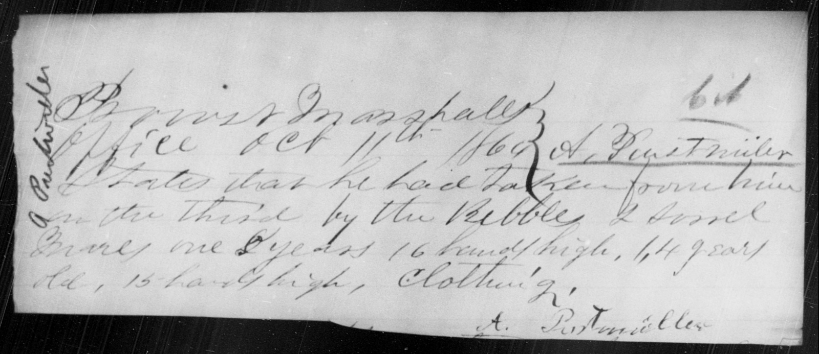 Purstweller, A - State: [Blank] - Year: 1864