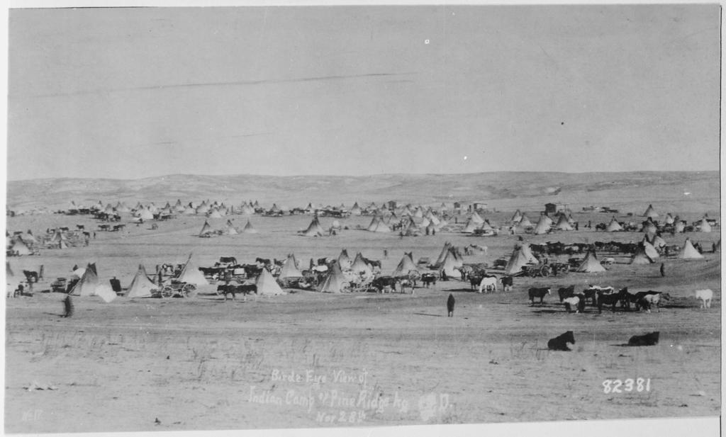Bird's Eye View of Sioux Camp at Pine Ridge, South Dakota
