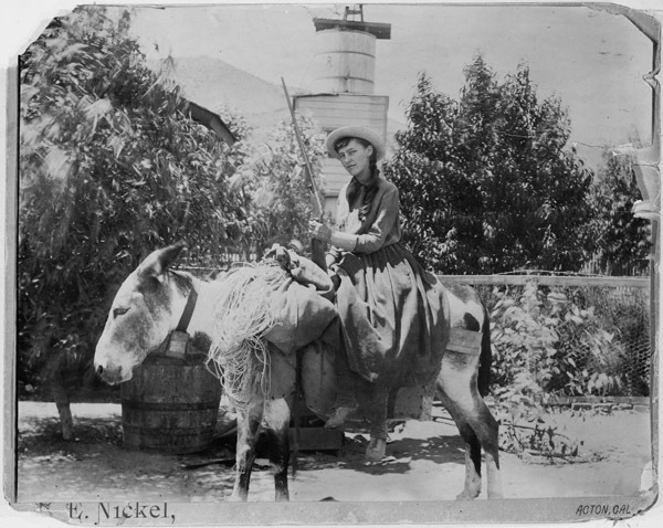 Photograph of Lou Henry Posing on a Burro at Acton, California