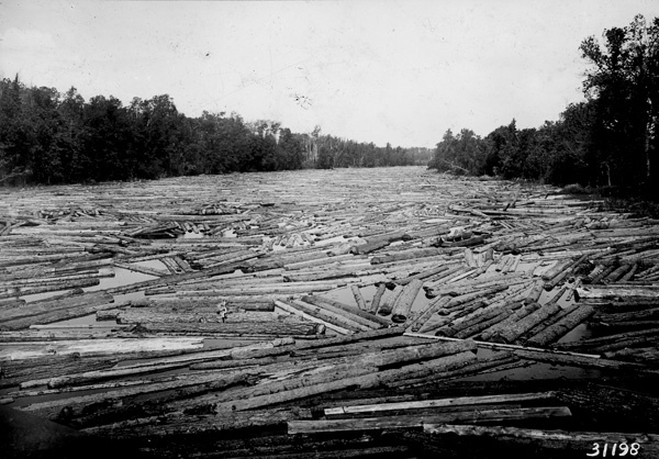 Photograph of Drive on Prairie River in Itasco County, Minnesota