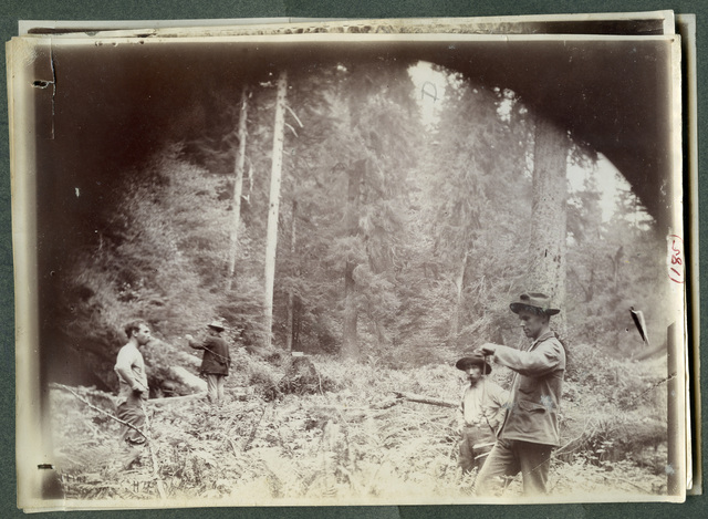 Photograph of Four Men Standing in the Woods