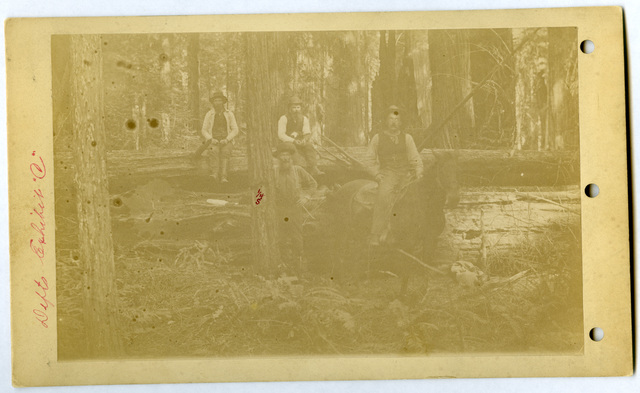 Photograph of Four Men with Fallen Trees