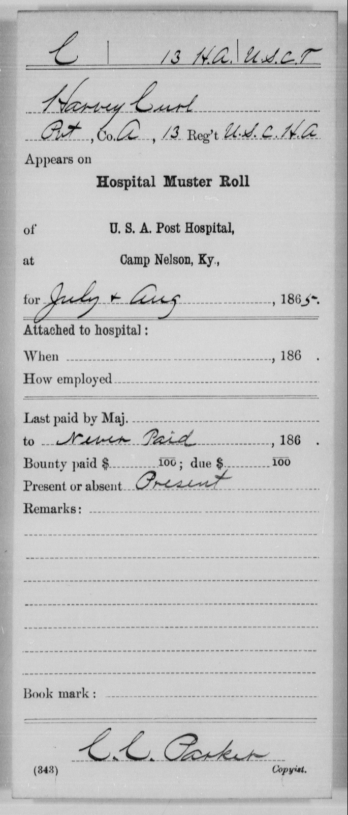 Curl, Harvey - Age [Blank], Year: 1865 - 13th US Colored Heavy Artillery, Misc Cards - United States Colored Troops: Artillery Organizations