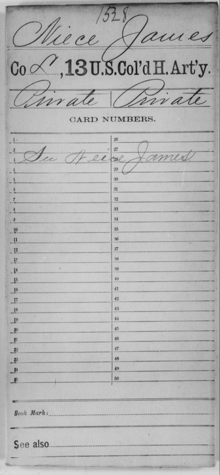 Niece, James - Age [Blank], Year: [Blank] - 13th US Colored Heavy Artillery - United States Colored Troops: Artillery Organizations