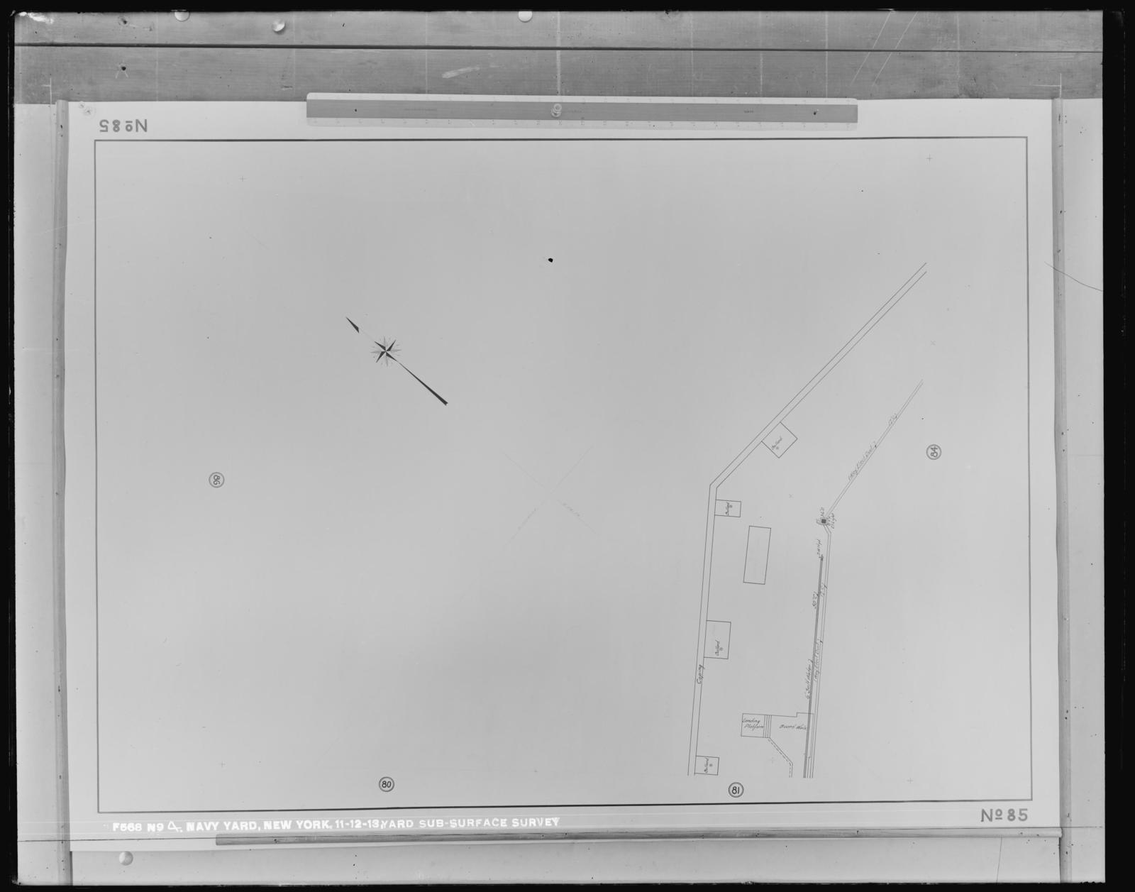 Yard Sub-Surface Survey