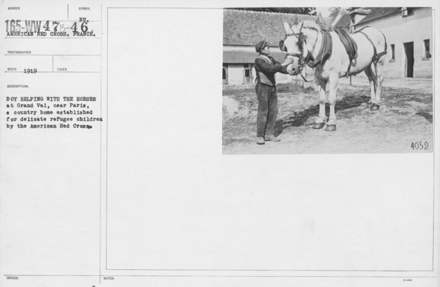 American Red Cross - Refugees - Boy helping with the horses at Grand Val, near Paris, a country home established for delicate refugee children by the American Red Cross