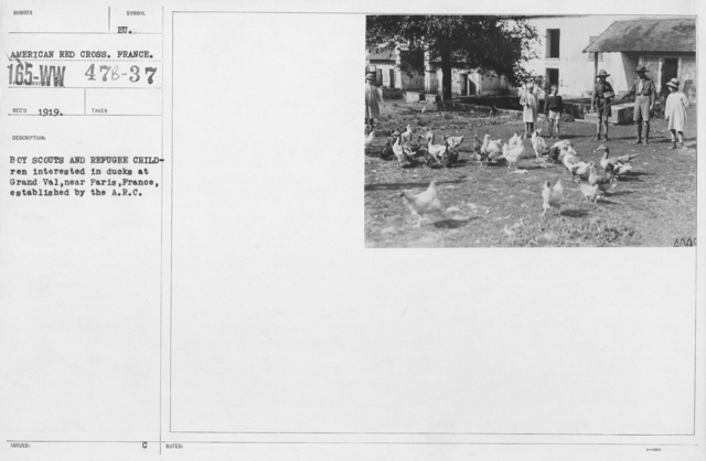 American Red Cross - Refugees - Boy scouts and refugee children interested in ducks at Grand Val, near Paris, France, established by the A.R.C
