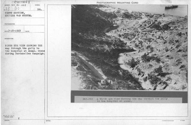 Birds eye view showing the way through the gully to the hospital at Anzac. Scene during Dardanelles Campaign