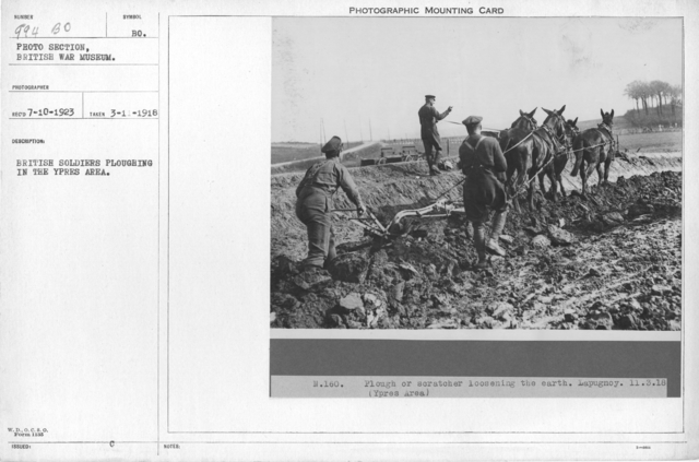 British soldiers ploughing in the Ypres Area