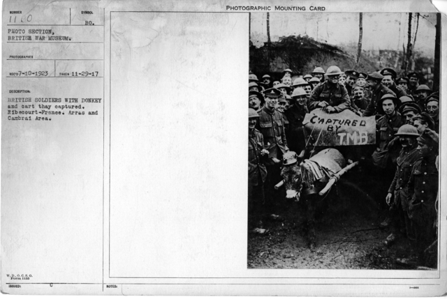 British soldiers with donkey and cart they captured. Ribecourt-France. Arras and Cambrai Area