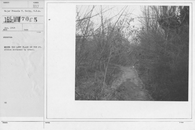 Camouflage - Roads - Shows the left flank of the position screened by trees