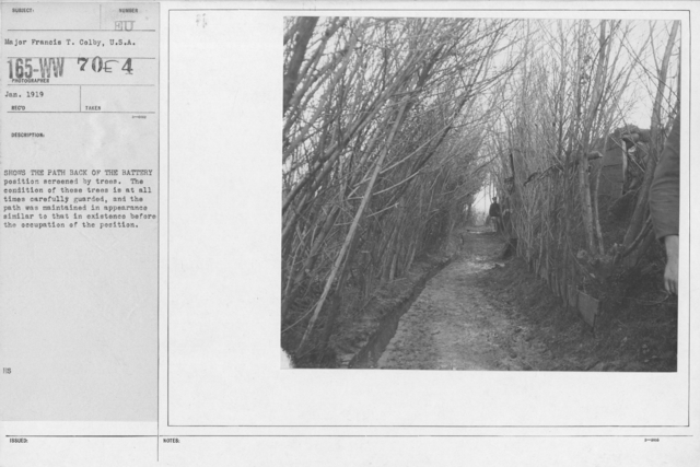 Camouflage - Roads - Shows the path back of the battery position screened by trees. The condition of these trees is at all times carefully guarded, and the path was maintained in appearance similar to that in existence before the occupation of the position