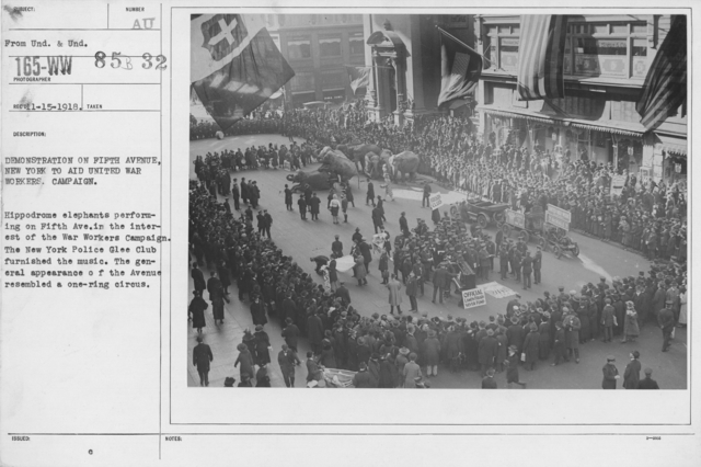 Ceremonies and Parades - Demonstration on Fifth Avenue, New York to aid United War Workers Campaign.  Hippodrome elephants performing on Fifth Ave. in the interest of the War Workers Campaign.  The New York Police Glee Club furnished the music.  The general appearance of the Avenue resembled a one-ring circus