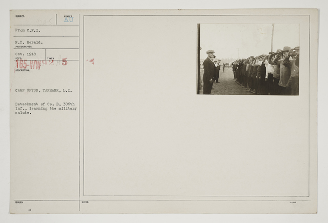 Ceremonies - Salutes and Parades - American Miscellaneous - Camp Upton, Yaphank, Long Island. Detachment of Company B, 306th Infantry, learning the Military Salute