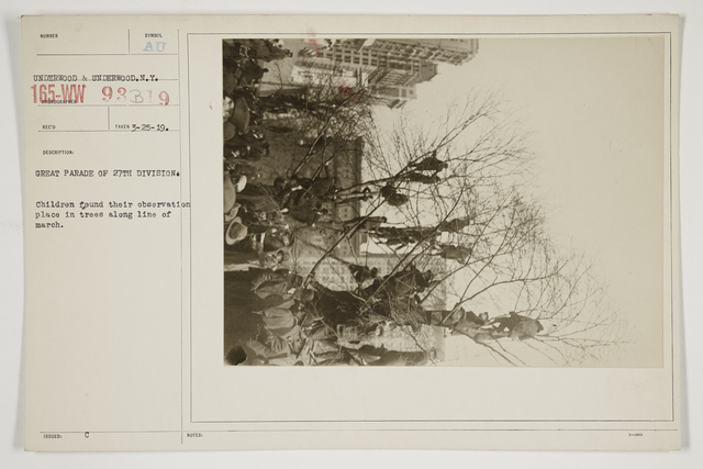 Ceremonies - Salutes and Parades - New York - Great parade of 27th Division.  Children found their observation place in trees along line of march