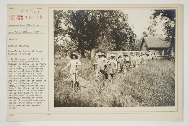 Colleges and Universities - Barnard College - Barnard College.  Women's Agricultural Camp, Bedford, New York
