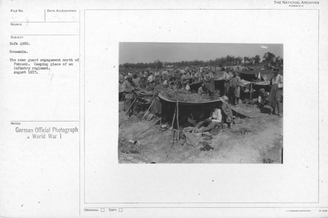 Roumania. The rear guard engagement north of Foscani. Camping place of an infantry regiment. August 1917