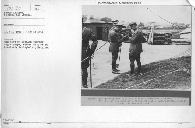 The King of England inspecting a puppy, mascot of a field hospital. Reninghelst, Belgium. 8-13-1916