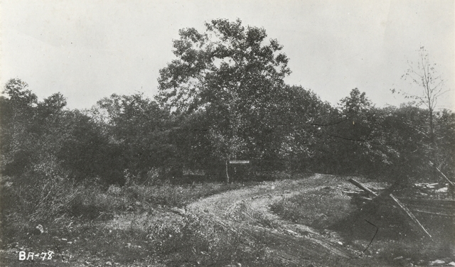 Photograph of the Site where Robert E. Lee's Farewell Address was Made, Appomattox Court House, Virginia