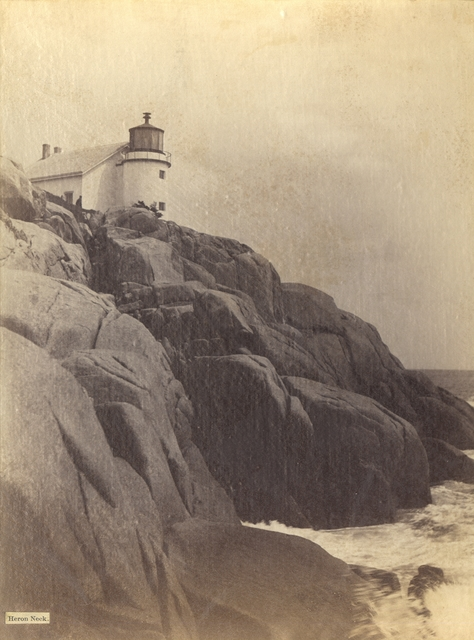 Heron Neck -- Maine