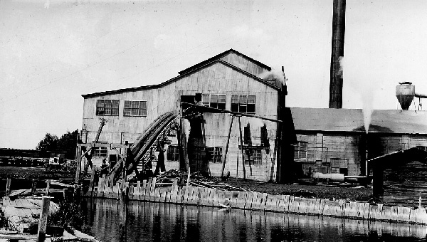 Photograph of Tigerton Lumber Company Sawmill from Log Pond