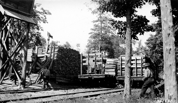 Photograph of Cleveland Ciffs Iron Company Tie Mill from the Rear