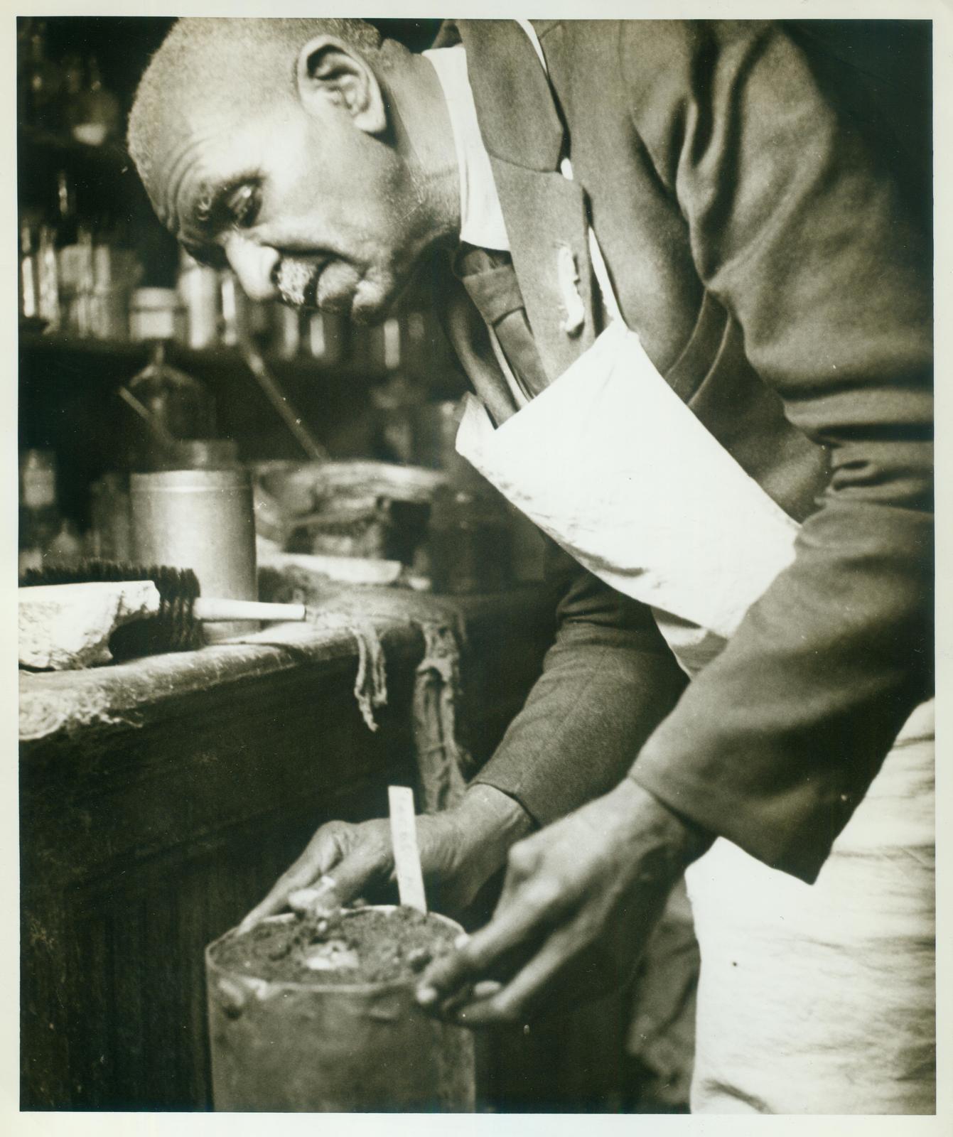 George Washington Carver, Chemist