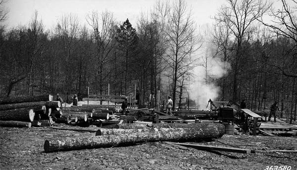 Photograph of an Efficient Ozark Sawmill in Operation