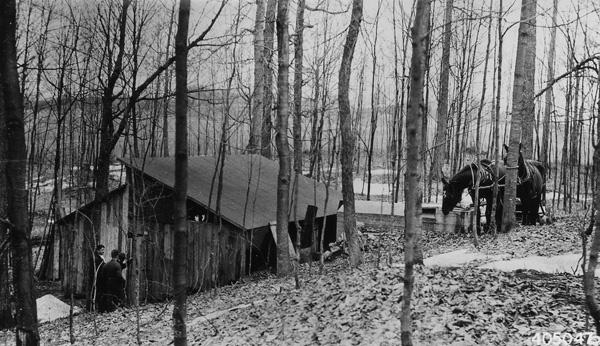 Photograph of Sugar House Near Bear Lake, Michigan