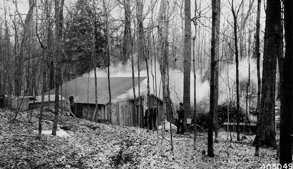 Photograph of the Sugar House Near Bear Lake, Michigan