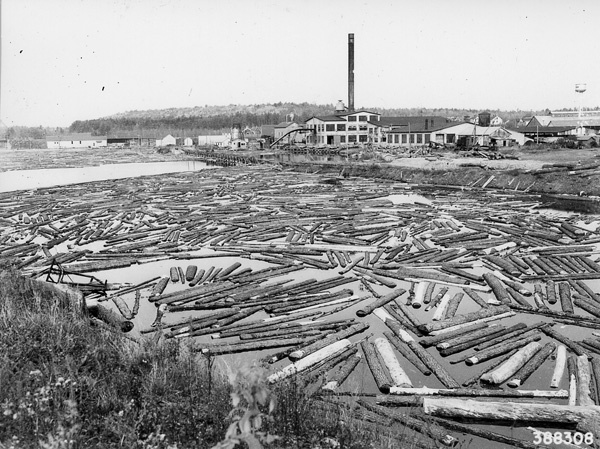 Photograph of Mill Pond at Neopit, Wisconsin