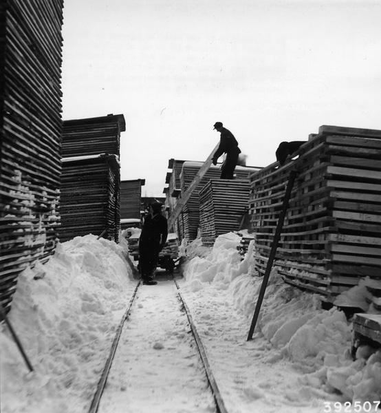 Photograph of Mill Workers Stocking Hemlock Lumber
