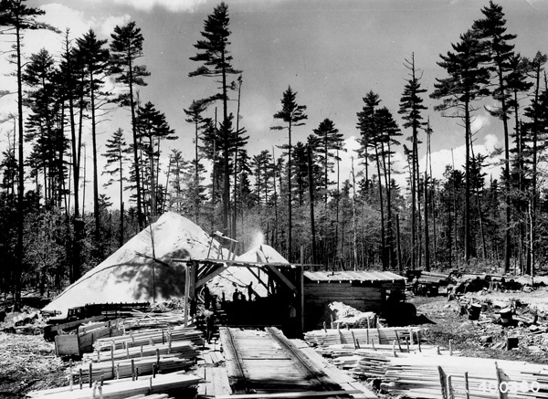 Photograph of Portable Sawmill