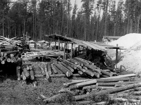 Photograph of G. E. Hall's Portable Sawmill