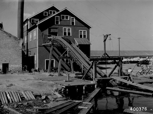Photograph of Red Pine Logs Going Up the Jack Ladder to the Head Saw at the Sawmill of the Bailey Lumber Company