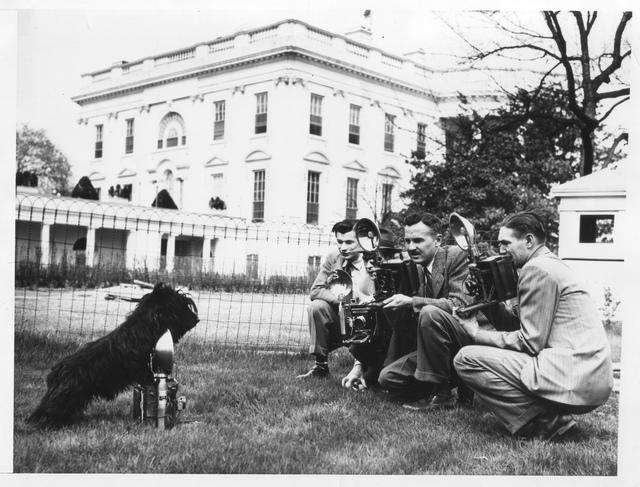 Fala Photographing the Photographers at the White House, Washington, DC