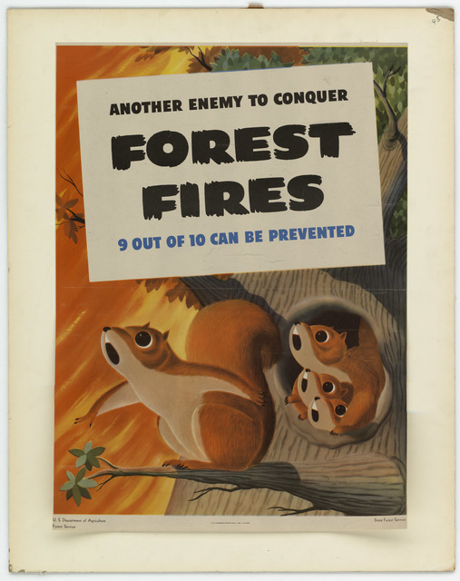 Another Enemy to Conquer:  Forest Fires; 9 Out of 10 Can Be Prevented
