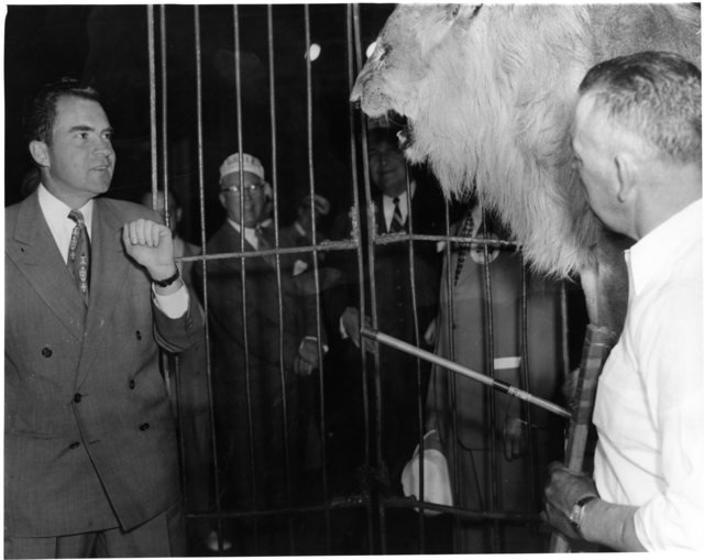 A lion growls at Richard Nixon during a Saints and Sinners luncheon and charity roast