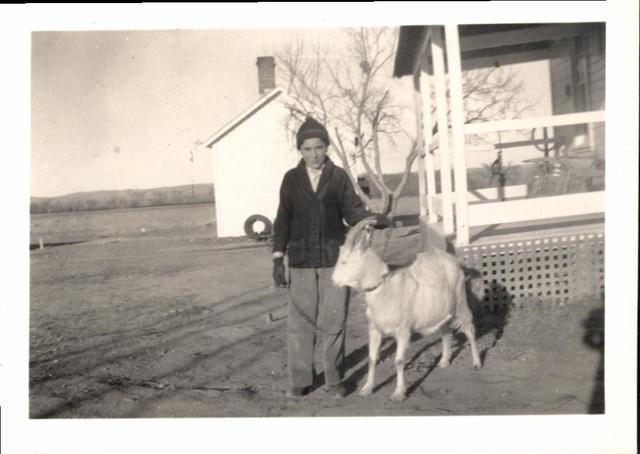 """Farming (Boy with a """"Favorite Nanny"""" Goat)"""