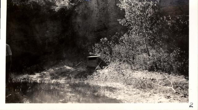 Landscape (Condemned Springs)