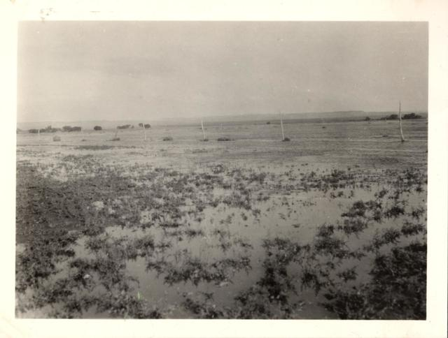 Landscape (Flood Waters at Dam No. 28)