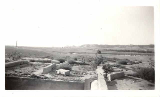 Landscape (Tornado Ruins)