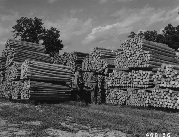 Photograph of Mr. Jerry Kladiva of the Shawnee National Forest Supervisor's Office and Forest Ranger Marvin Marshall of the Winona Ranger District Inspecting a Stack of Pine Posts at the Moss Tie Company Mill at Winona, Missouri