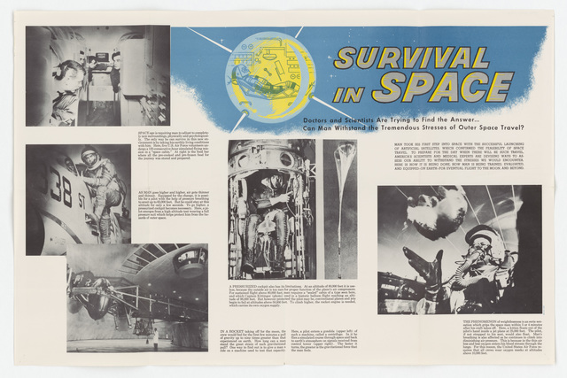 Survival in Space