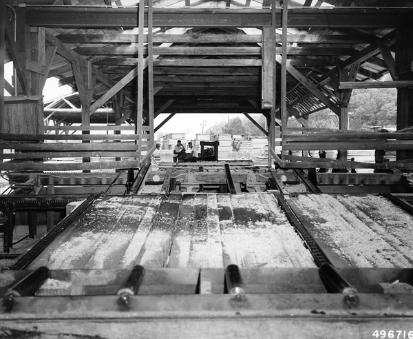 Photograph of Looking out Across the Green Chain to Stacked Lumber