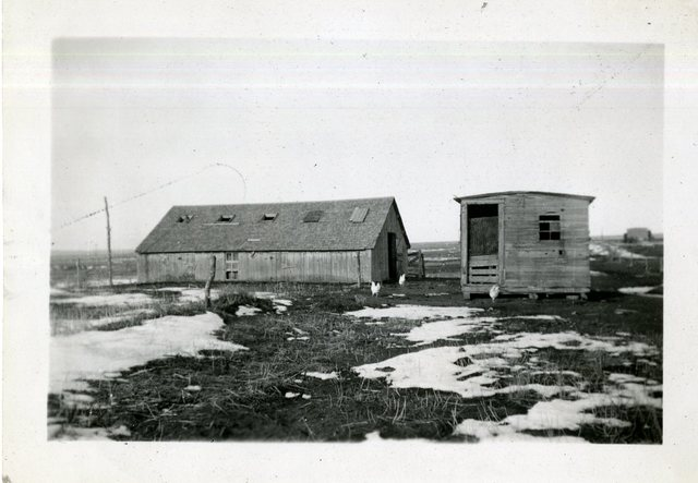 Percy Kock Hog House and Outbuildings