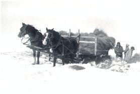Photograph of a Crow Creek Winter Scene