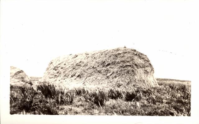 William (Bill) Neck's Hay Stack
