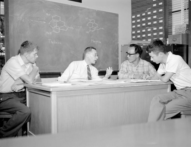 Planning next step in Bio-Organic group's study of opium alkaloids. Project leader Henry Rapoport, second from left explores possible approaches with group members. Left to right: Robert Martin, Isamu Murakoshi, Masao Honjoh. Notations on blackboard show the hydropenanthrene sequence, demonstrated in earlier work by the group. Photo taken August 1962. Morgue 1962-97 (P-1). [Photographer: Donald Cooksey]