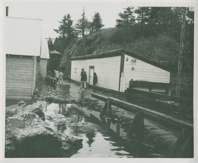 10/64. Seldovia - This photo shows the boardwalk flooded by 10 inches of water during an October high tide. It also shows sand bags in place. The Corps of Engineers provided 25,000 bags